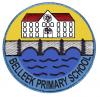 logo Belleek(2) Primary School